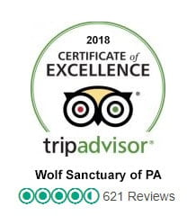 Over 600 reviews on Trip Advisor